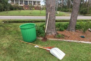 Landscaping services manteo NC 12