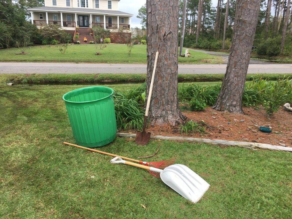 Clean up grass clippings